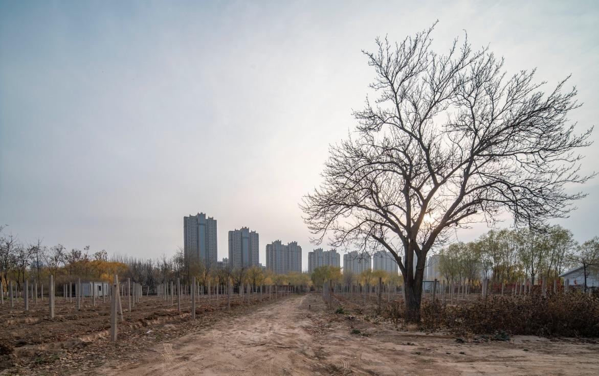 中国酒业新闻网·华夏酒报-酒类产业链首席门户